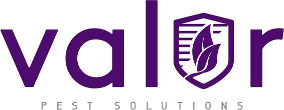 Logo 2x size